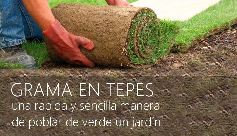 Pin colocacion de cesped natural rollos tepes siembra - Semillas de gramon ...